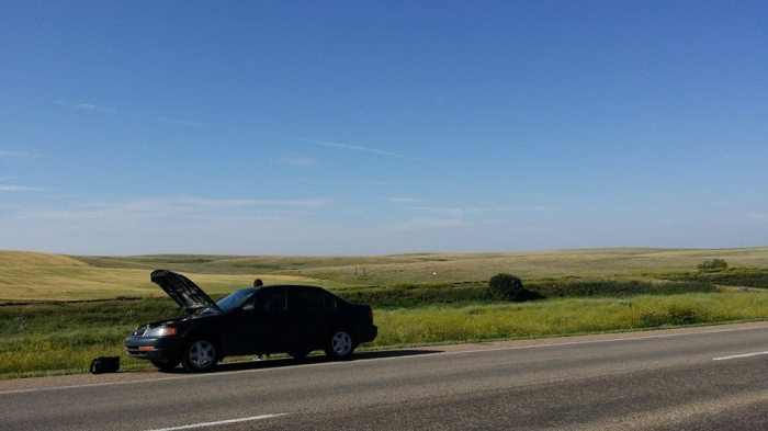 Dead Car. Photo courtesy of Jonny Waldner.