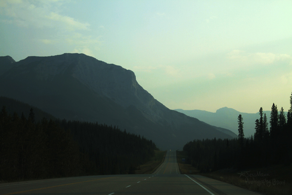 Highway 16 West to Jasper.