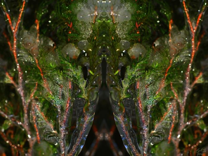 untitled-3smsig