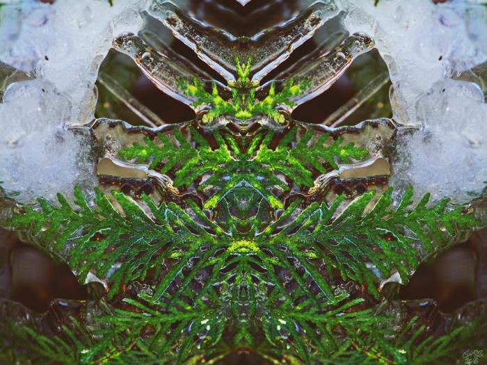 untitled-4smsig