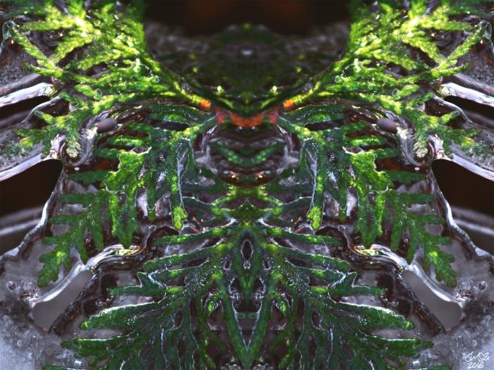untitled-6smsig