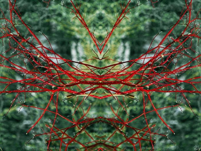 Untitled-5smsig